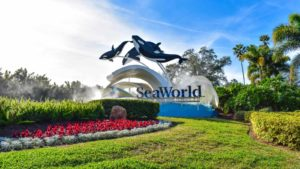 il logo Seaworld (SEAS) al di fuori di Seaworld