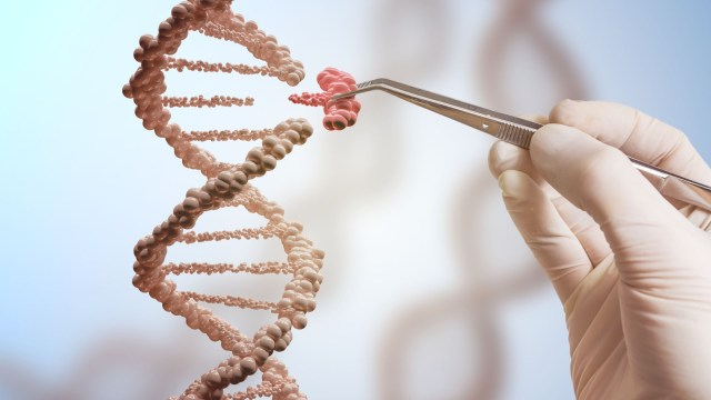 Concept of DNA being edited using CRISPR-Cas9 technology.