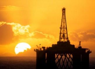 oil-38-326x1591