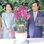 Singapore names flower in honour of Thai junta leader
