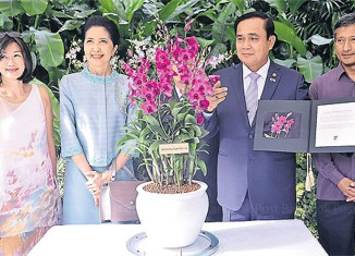 Singapore names flower in honour of Thai junta leader
