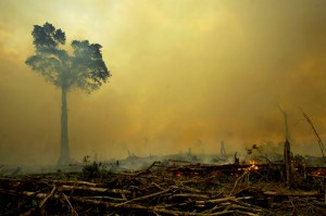 Indonesia wildfire