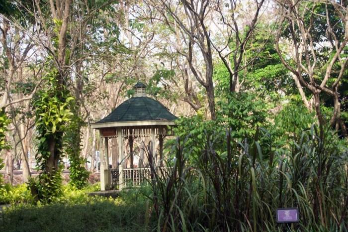 Princess Maha Chakri Sirindkorn Herbal Garden