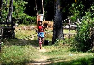 cambodia-farmer