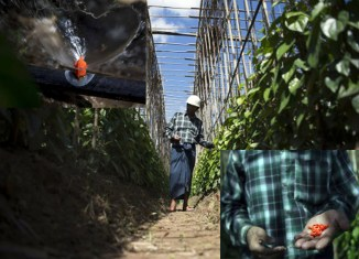 Myanmar farmers enter modern age with 3D printing technology