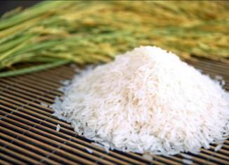 Thai jasmine rice variety named best in the world