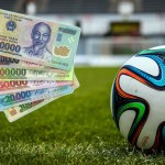 As soccer World Cup kicks off, Vietnam legalises sports betting