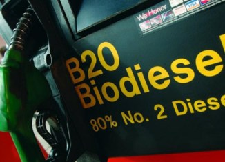 Malaysia To Expand Use Of Palm Oil In Biofuels