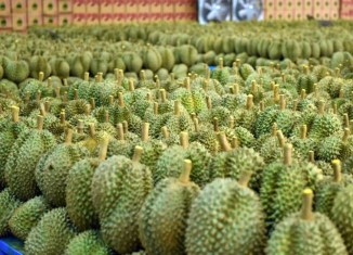 Thailand Is World's Largest Durian Exporter