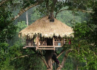 Tourism in Laos: Touring the Bokeo Wilds
