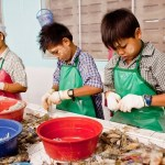 Thailand follows Brazil in child labour policy