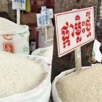 EU slams Cambodia over 'rice export mix'