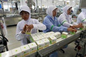 Indonesia investment