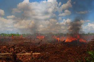 Resources energise Kalimantan growth – but at what cost?