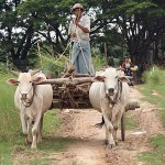 Study: 35% of rural Myanmar people rely on loans