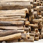 Myanmar ends raw wood export