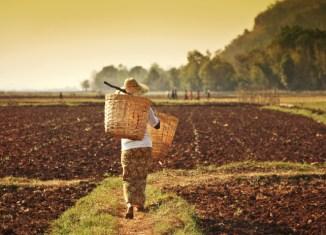 Myanmar Wide