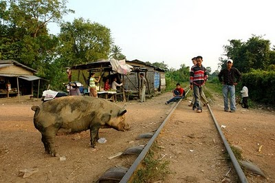 Cambodia drafts PPP programme