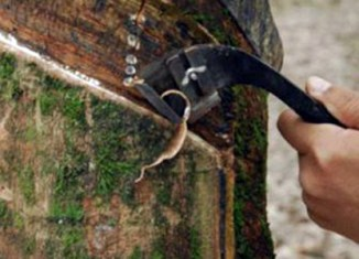 Myanmar earns $102 million in rubber exports
