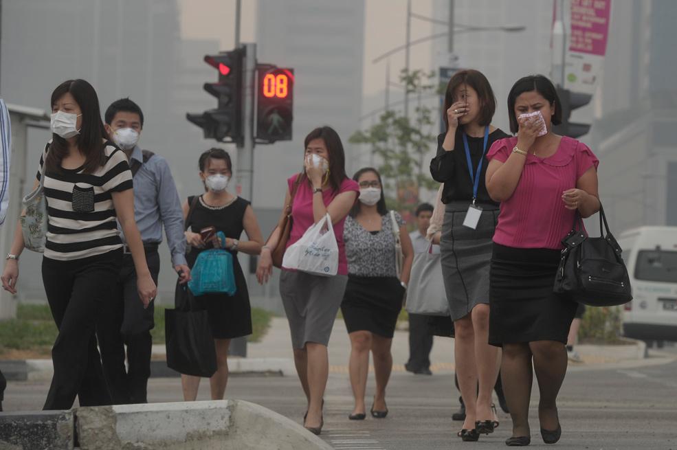 Singapore smog hurts businesses, tourism