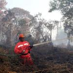 Indonesia asks ASEAN for help to tackle fires