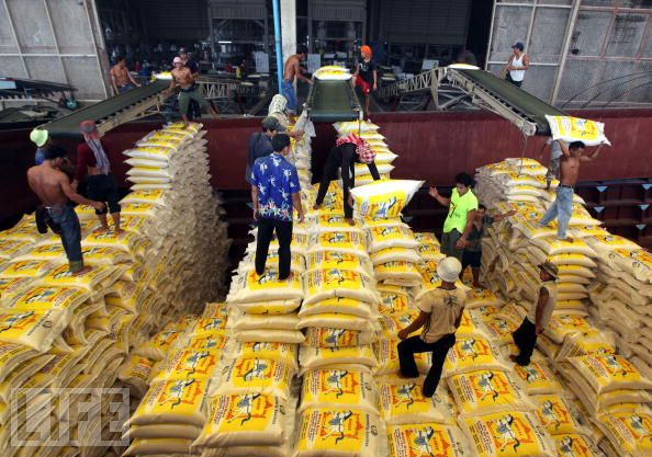 Thailand cuts rice subsidies