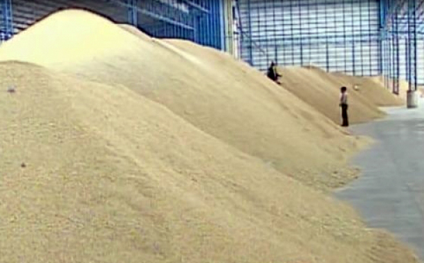 Thailand to renew disputed rice scheme