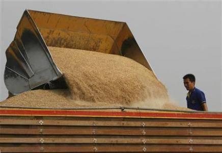 Thailand Rice Stocks