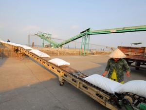 Vietnam rice export