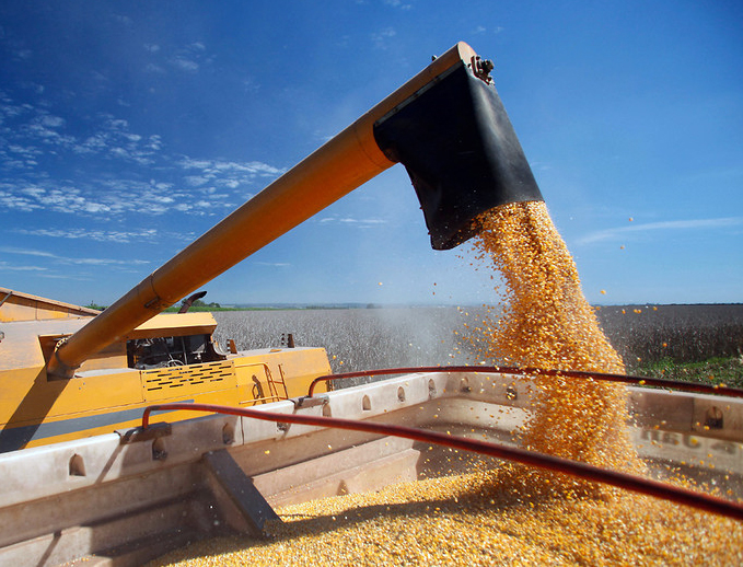 Food security: My food, your food, our food