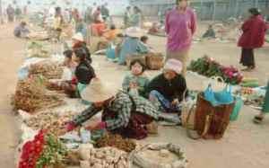 myanmar microfinance