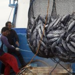 Philippines, PNG face EU import ban over illegal fishing