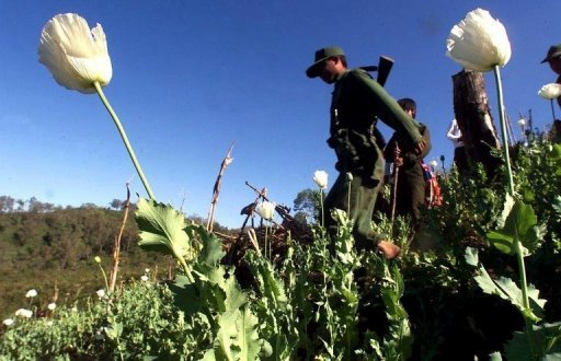 Investing in Myanmar: What about the poppy economy?