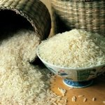 Race for top rice exporter set off