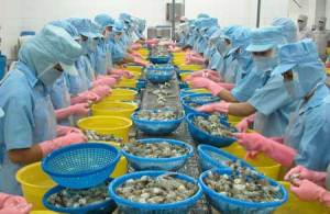 seafood-factory