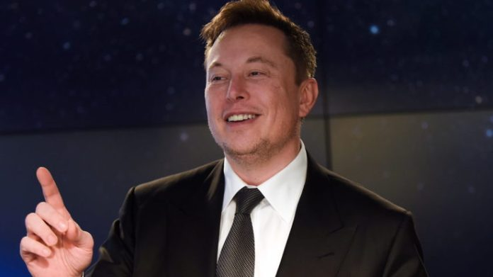 Elon Musk stirs up the crypto world once more