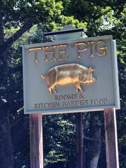 Postcard From The Pig, New Forest