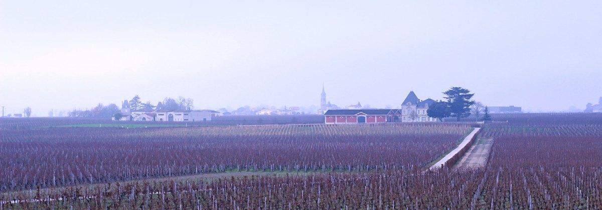 Bodegas en Saint Emilion