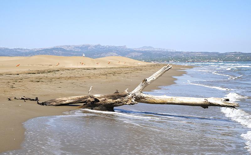 playa punta del fangar