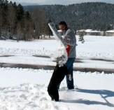 #36 Comeback - Snow Shovel Daisy