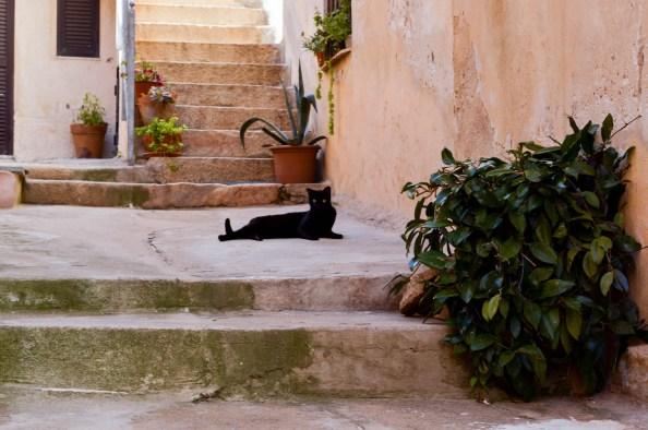 Sardegna La Maddalena_-111