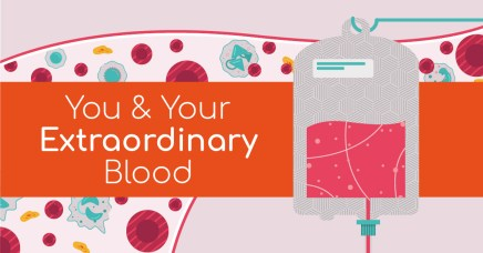 "A cartoon digital image of blood and a blood bag, with ""you and your extraordinary blood"" overlaid."