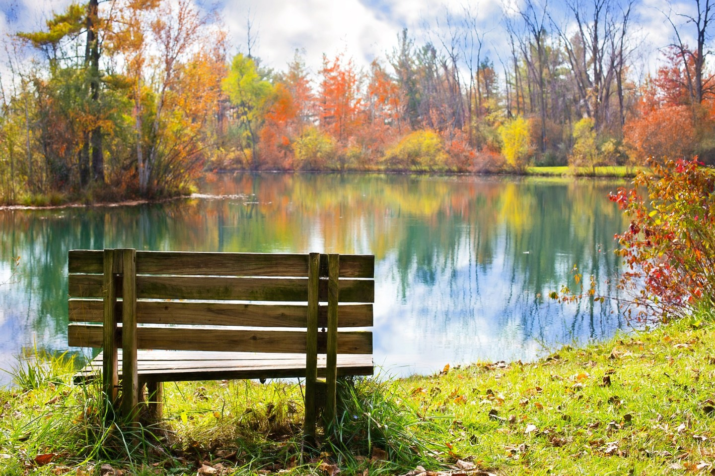 A photo of a bench in a park, with greenery, trees, and a lake in front.