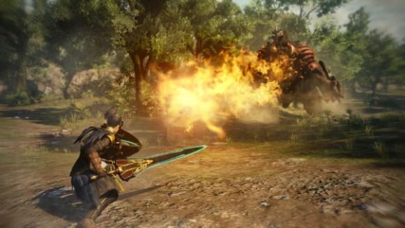 Sword & Shield_Boss fight