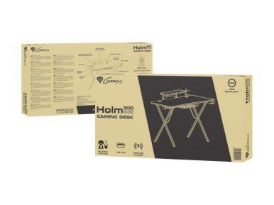 Holm300-11