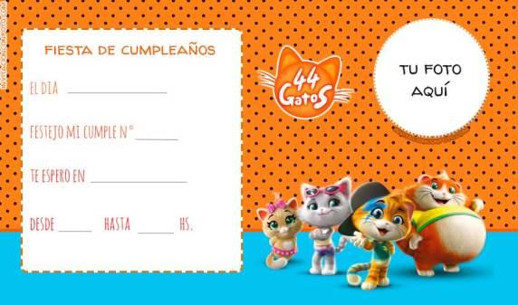 Fiesta 44 Gatos