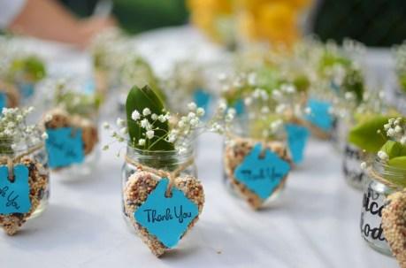 Plantitas para invitados