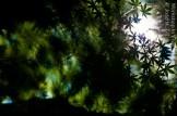 JGil_07_2012-10