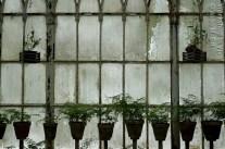 JGil_07_2012-7