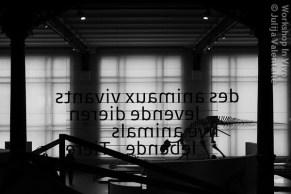 JulVal_07_2012-11